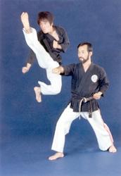 Master YB Kim & Grandmaster HC Kim